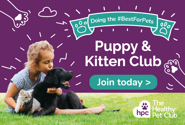 Join the puppy and kitten Healthy Pet Club today