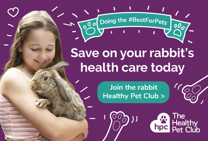 Join the rabbit Healthy Pet Club today